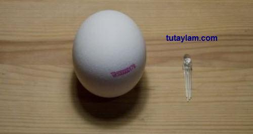 Đèn led và quả trứng