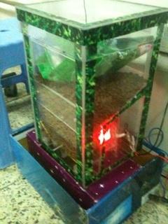 máy cho cá ăn tự động