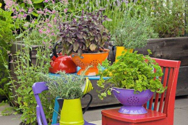 trồng hoa và cây cảnh từ vật liệu giá rẻ